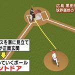 現代の魔球とも言われる『フロントドア』とは左打者のインコースへのツーシーム!
