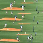 ナゴヤドーム開催の女子プロ野球観戦はサードコーチャーに大注目して応援してみました。