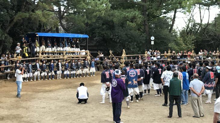 若い衆と馬との熱いバトル!日本の奇祭とも言われる地元のお祭り【おまんと祭り】