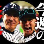 石橋貴明さんの『杉谷愛・帝京愛・野球愛』が止まらない【貴ちゃんねるず】