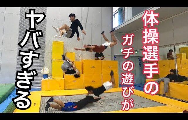 現役体操選手たちのトランポリンを使った本気の遊びが凄すぎてずっと見てられる