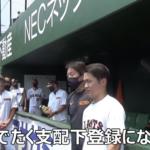 我らが高浜軍出身の戸田懐生投手が支配下登録選手を勝ち取り、1軍デビュー間近!