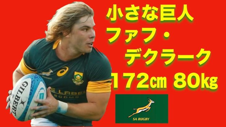 ワールドラグビー年間優秀選手賞にもノミネートされた南アフリカの小さな巨人【ファフ・デクラーク】