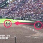 1塁・3塁コーチャーの一番大事な役割は走者の目の代わりになること。